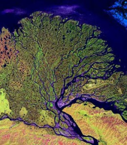 Lena River Delta, Courtesy of NASA
